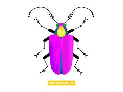 longhorn beetle beetle bug vector illustration design