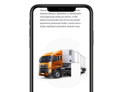 International transport & forwarding website done!