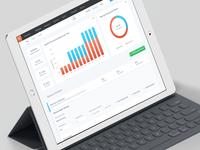 Revenues Dashboard for iPad