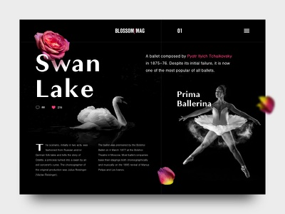 Swan Lake typography layout accent colors black and white dark exploration swan lake ballet