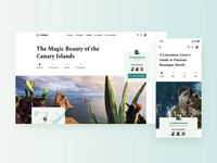 Article page explorations