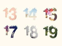 Functional Floral Numbers