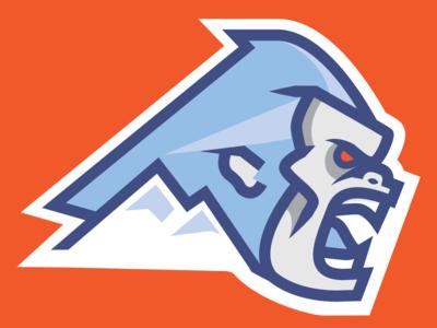 Yeti - Sports Logo Concept