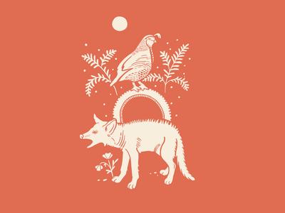 Quail + Coyote