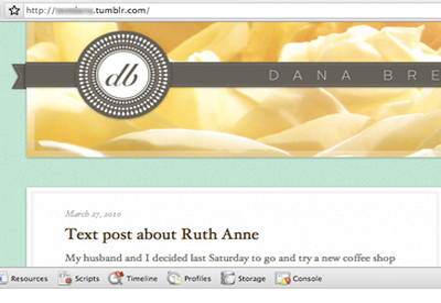 Dana's New Theme tumblr brown hoefler