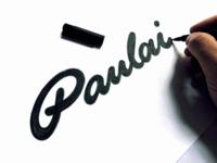 Paulai identity logotype logos sketches calligraphy logo brushlettering logosketch logodesigner logodesign handwritten branding process sketch logo custom calligraphy script flow lettering