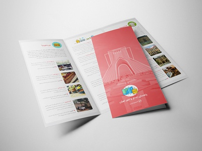 Snapptrip Brochure Design