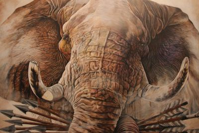 Undefeated elephant arrows coloredpencil drawing wildlife color