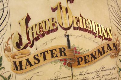 Master Penman typography calligraphy script lettering painting illustration goldleaf