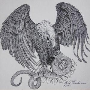 Eagle's Prey eagle snake calligraphy illustration bird americana