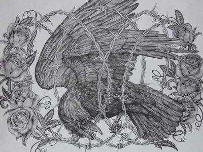 Caged Bird bird raven barbedwire roses illustration