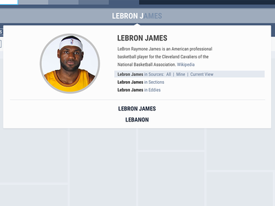 Search autocomplete grid placeholder lebron james search ui user interface