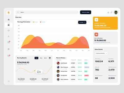 UI Overview infographics charts earnings ui template webapp ui dashboard styleguide ui elements ui design