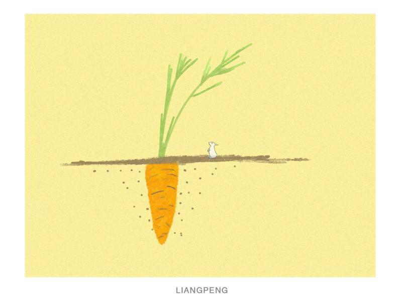 CARROT carrot fruit illustration