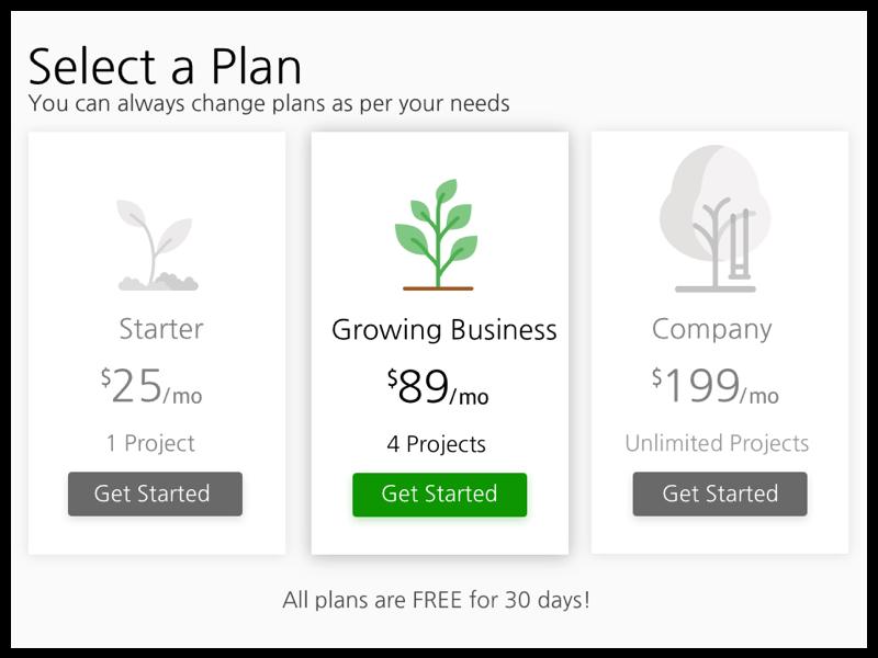 Pricing Plans plant web design landing page grey plan pricing plans payment plans pricing