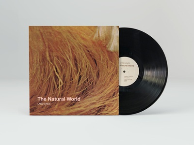 Album Art for 'The Natural World' by Land Lines
