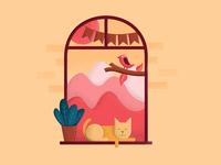 Cat on the window