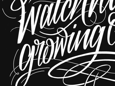 Lettering experiments typography hand letter procreate embellishment lyrics script lettering