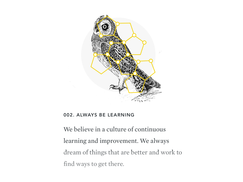 Owl web typography icon illustration