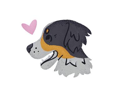 my bern, ern texture hound dog breed dog bern switzerland bernese mountain dog illustration
