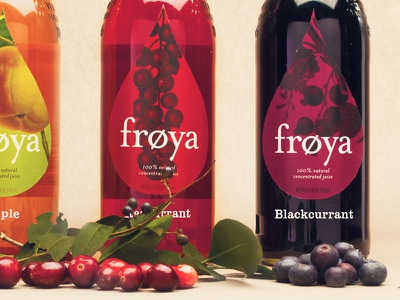 Frøya frøya saft packaging juice drinks