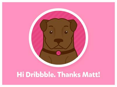 CW's Debut Shot! illustration vector hello shot logo icon dribbble dog debut