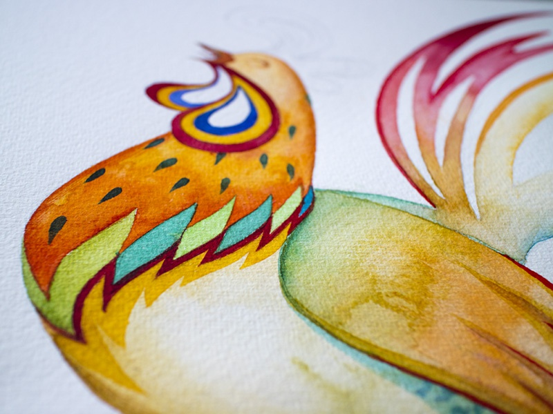 Rooster illustration wip color aquarelle watercolor rooster