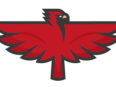 Go Cardinals! summer baseball st. louis saint louis st louisville mlb college sports