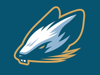 Wisconsin Rapids Rafters rebranding cap uniform jersey apparel league minor baseball branding logo sports