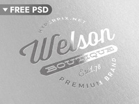 [FREE DOWNLOAD] Metallic Silver Logo Mockup