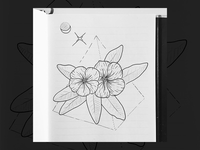 🌺 art sketch drawing moon pyramid egypt flower illustration