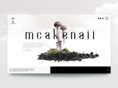 Concept website NATURAL SPORES© homepagedesign interfacedesign website web logo uidesign ui art direction homepage design ui designs