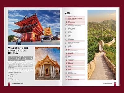 Travel Brochure DPS Concept WIP branding brochure concept content dps identity magazine print simplicity travel wip
