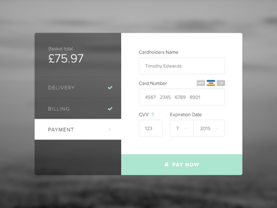 Daily UI #002 Credit Card Checkout card details credit card daily ui payment checkout dailyui 002