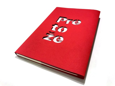 Cover for Pretože by Simona Baniarová book cover graphic design