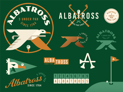 Albatross Golf Badges geometric vintage retro crest pennant hole in one golf ball flag tee golf club animal bird illustration logo