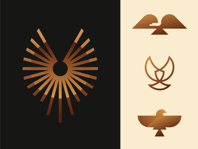 Golden Eagle Explorations bronze circle line fly gold negative space america spiral gradient wing bird animal geometric illustration logo