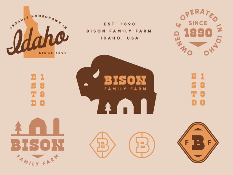 Brandimals 02 - Bison midwest barn vintage idaho buffalo farm badge animal geometric branding illustration logo