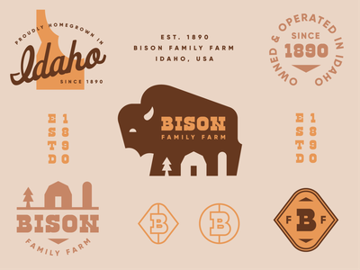 Brandimals 02 - Bison midwest barn vintage idaho buffalo farm badge animal geometric branding illustration logo
