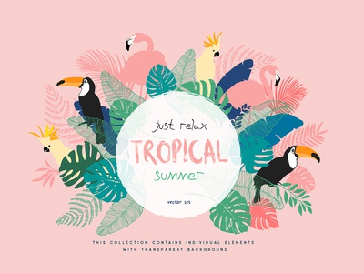 Tropical summer tittle
