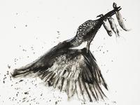 Kingfisher paintin