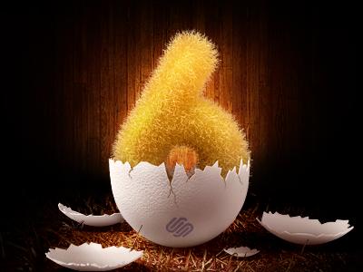 Egg squarespace6 egg