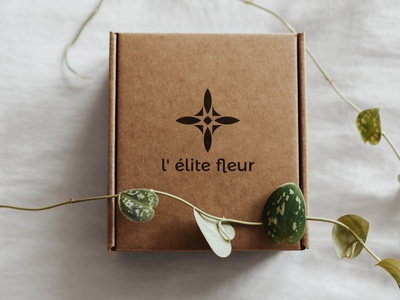 Craft Paper Box craftwork craft minimalist box design fleur flowers logo branding illustration geometry shape minimal design typography flower flower box flower shop florist box