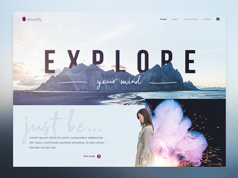 Explore design concept web