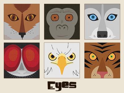 Eyes Children's Book Illustrations
