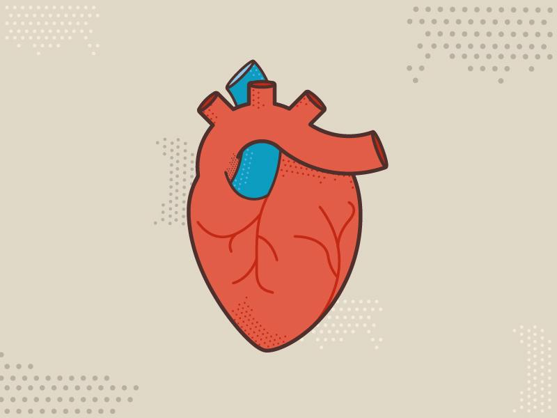 Halftone heart real heart anatomy color halftone vein illustration heart