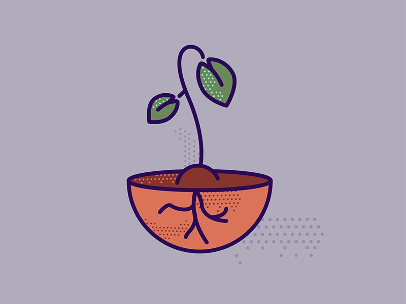Growth Sprout illustration roots leaves fauna plant sprout
