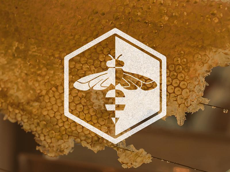 Bee Logo stripes insect honeybee hexagon honey bee logo