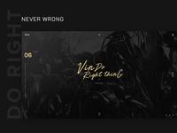 Vinli + Web Vision Design