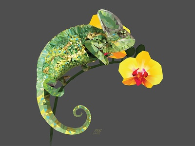 Chameleon on an Orchid inspiration design graphic polygons triangles orchid illustration chameleon